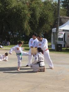 Muestra de los alumnos de Taekwondo